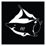 tubarão_arrumado150