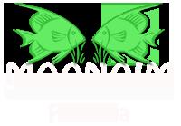 LogoSemOMdeMoldura_FundoBranco